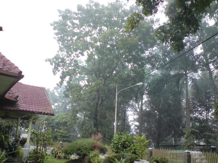 Kabut di Depan kosan