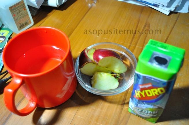 air putih, apel, dan minuman elektrolit